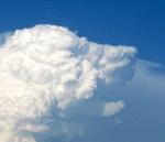 nube.perro