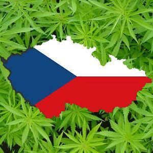 marihuana-chequia