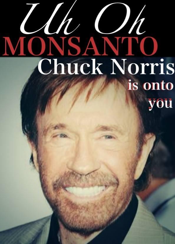 Chuck Norris contra Monsanto