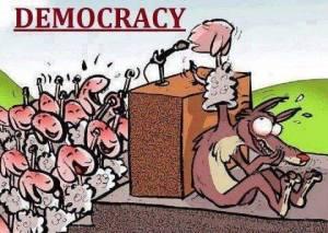 democracia-lobo-ovejas