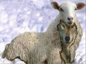 lobos-con-piel-de-oveja