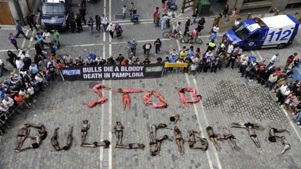 Contra la tortura a los animales!