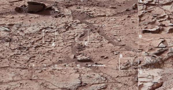 pedrolos-Marte