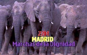 22-M-elefantes